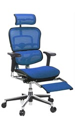 Ergohuman Chair with Legrest