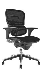 Ergohuman Classic Mesh Office Chair no Head Rest