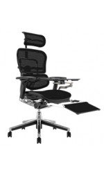 Ergohuman Office Chair with Leg Rest and Notebook Arm