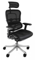Ergohuman Plus Leather Seat Mesh Back