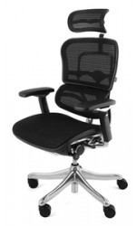 ergohuman-plus-mesh-office-chair