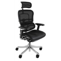 Ergohuman Plus Leather and Mesh Office Chair