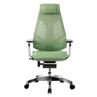 Genidia Mesh Colour Office Chair with Head Rest