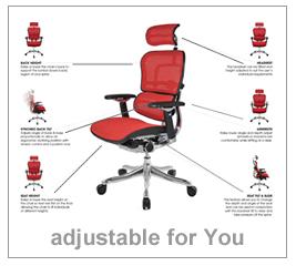 Ergohuman Enjoy Mirus And Ergohuman Plus Office Chairs