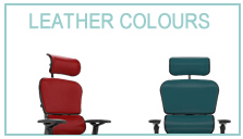 Ergohuman Leather Colours