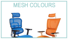 Ergohuman Mesh Colours