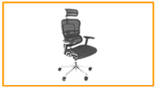 Ergohuman Plus Office Chairs