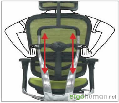Backrest Height Adjustment - Ergohuman Chair Adjustments