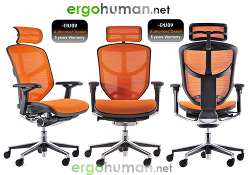 Enjoy Mesh Office Chairs also available in Leather or combinations and colours