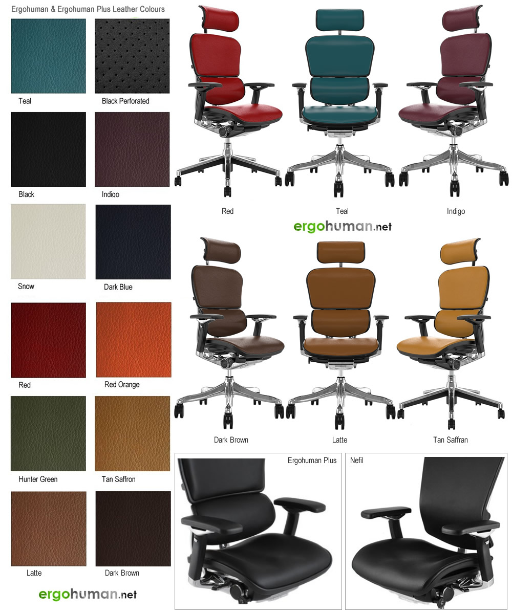 Leather Chairs Colours
