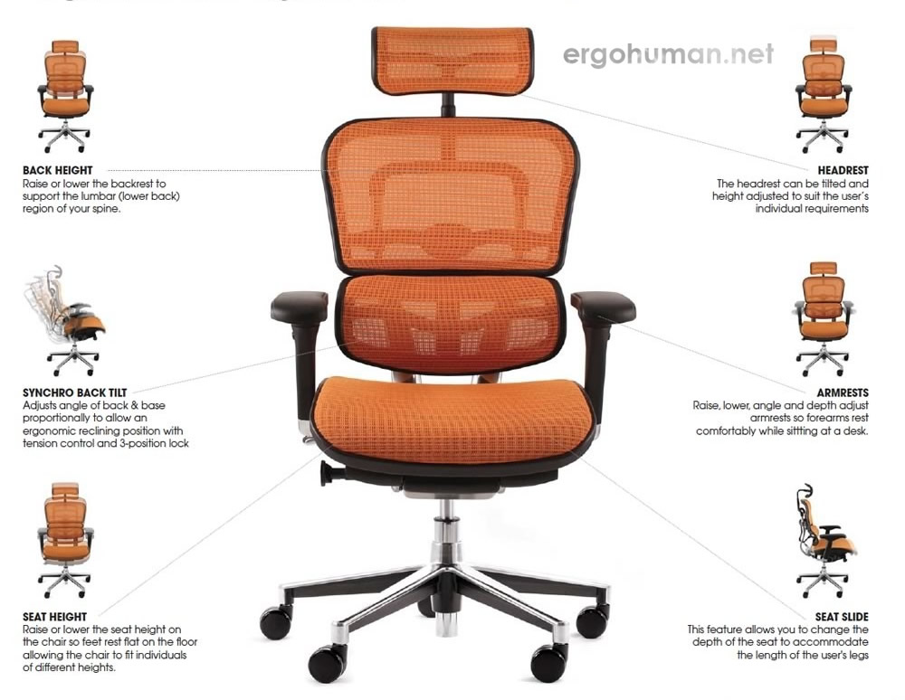 Ergohuman Chair Adjustments - Adjustable Chair