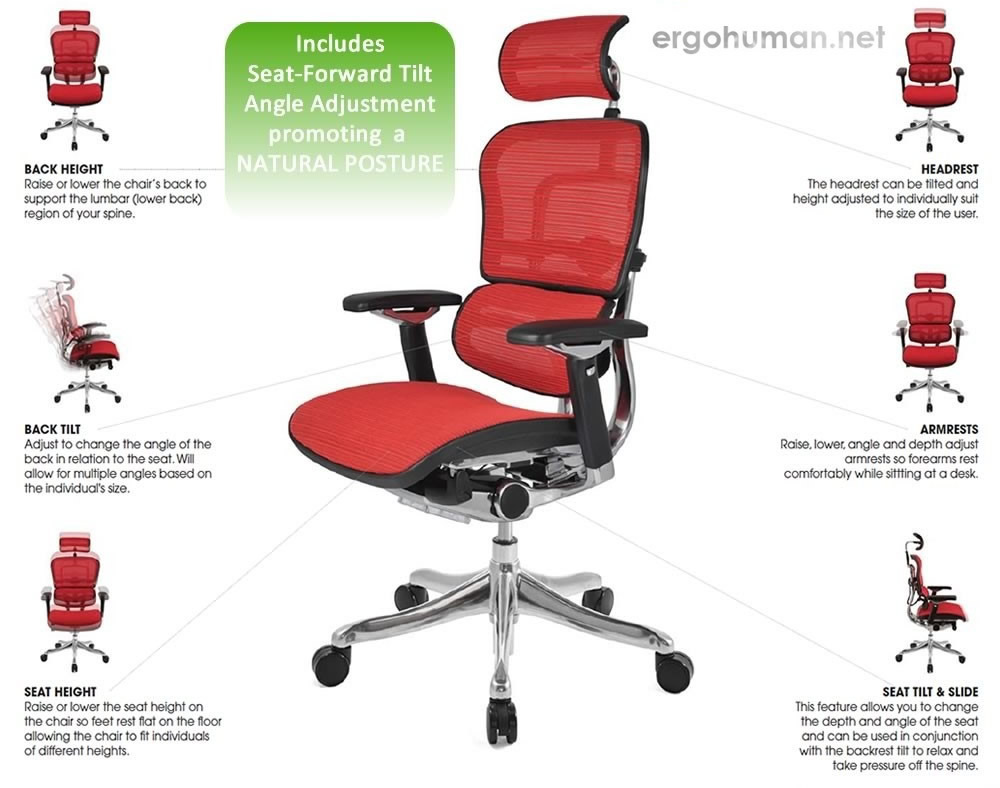 Ergohuman Plus Chair Adjustments - Adjustable Chair