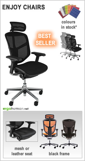 ergonomic office chairs - Enjoy Office Chairs - mesh or leather