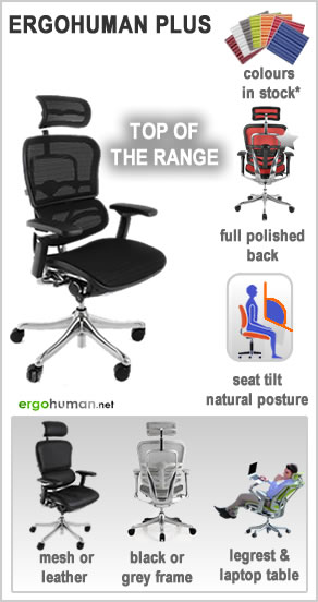ergonomic office chairs - Ergohuman Plus Office Chairs - mesh or leather