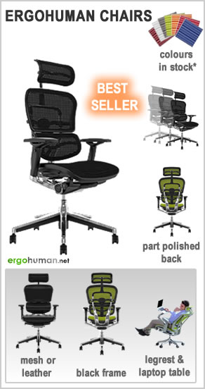 ergonomic office chairs - Ergohuman Office Chairs - mesh or leather