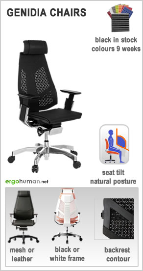 ergonomic office chairs - Genidia Office Chairs - mesh or leather