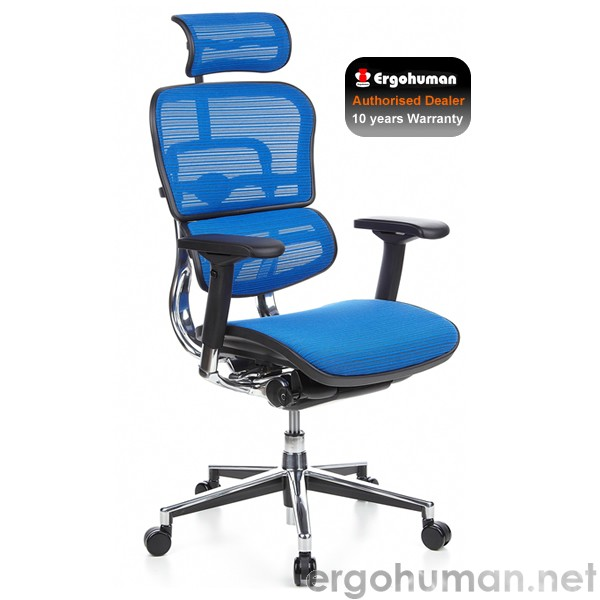 Ergohuman Blue Mesh Office Chair