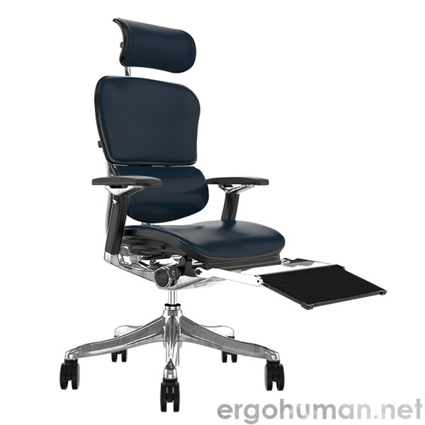 Ergohuman Plus Leather Ergonomic Office Chair with Headrest and Mesh Leg Rest