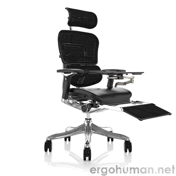 Ergohuman Plus Leather Seat Mesh Back Office Chair with Leg Rest and NoteBook Arm