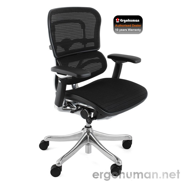 Ergohuman Plus Chair