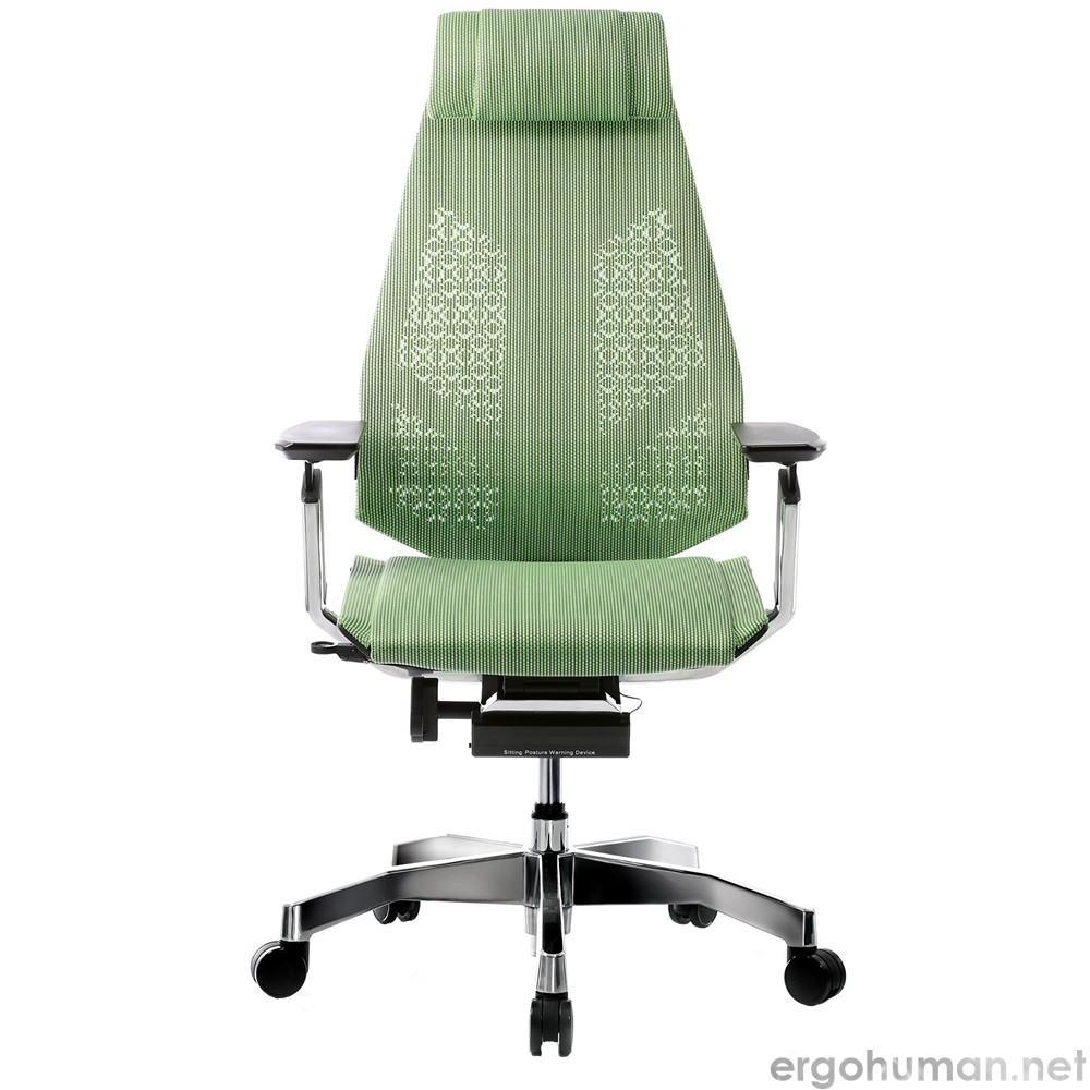 Genidia Green Mesh with Head Rest and Standard Polished Base