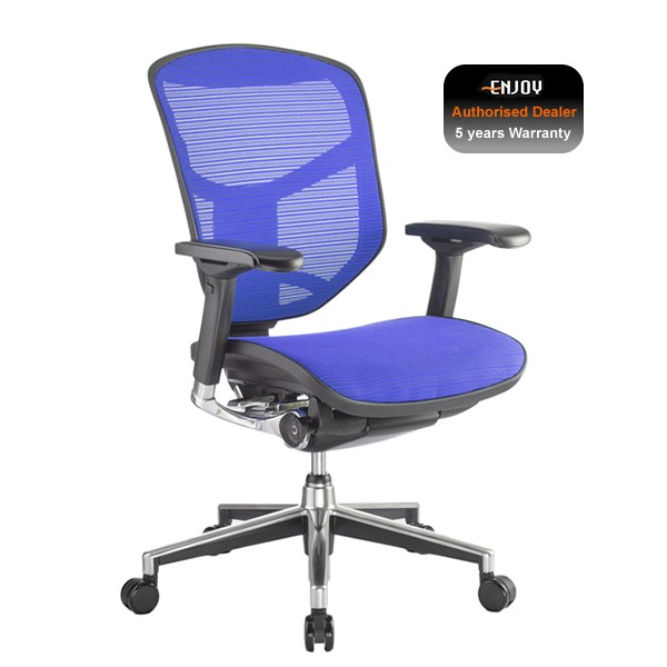 Enjoy Elite Full Mesh Office Chair
