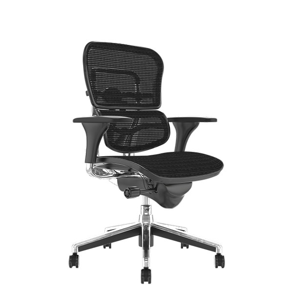 Ergohuman Classic Mesh Office Chair no Head Rest