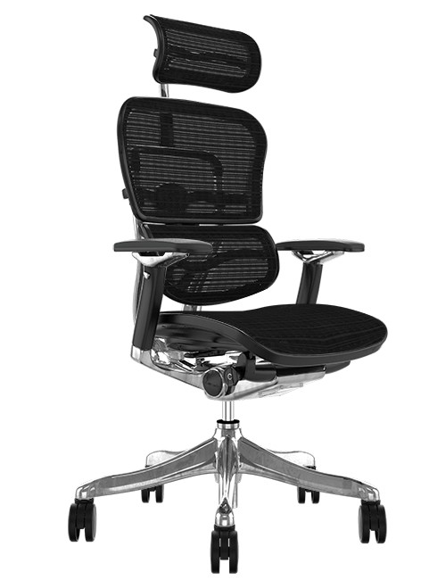 Ergohuman Plus Luxury Full Mesh Office Chair with head Rest