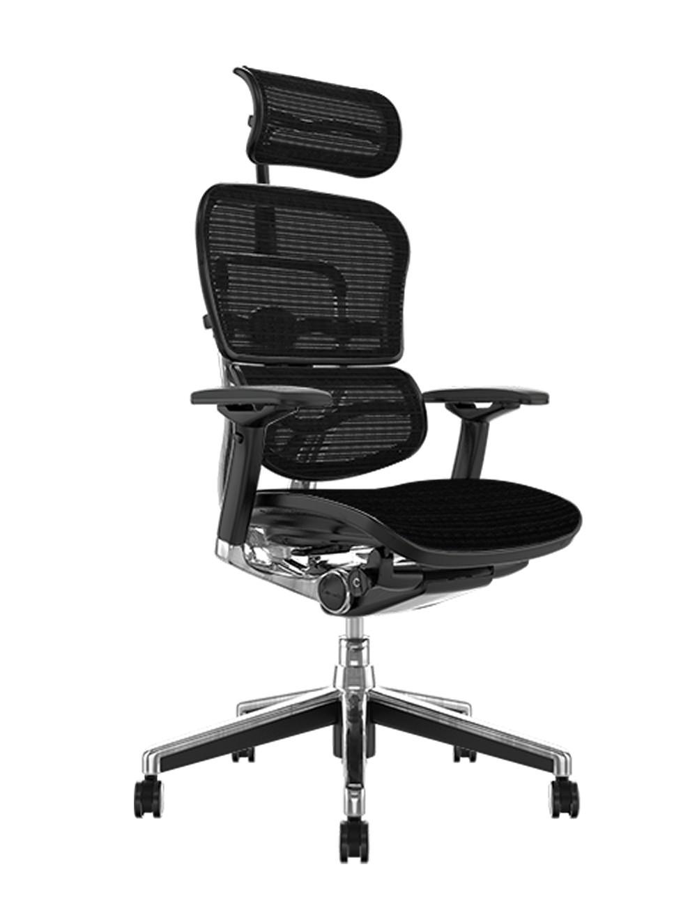Ergohuman Elite Mesh Office Chair with Headrest