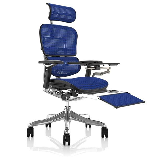Ergohuman Plus Office Chair with Legrest