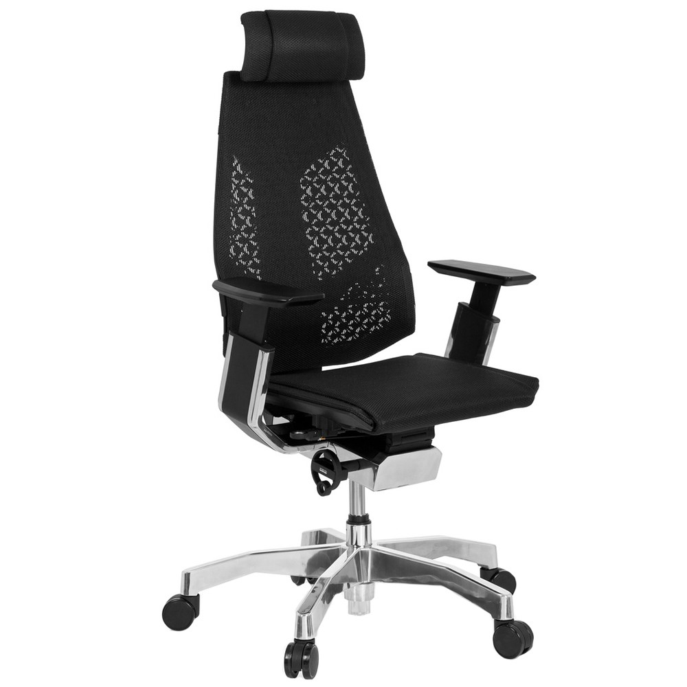 Genidia Office Chair with Head Rest, Black Polished Frame and Standard Polished Base