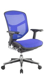 Enjoy Office Chair Blue Mesh