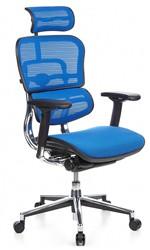 Ergohuman Blue Mesh Office Chair