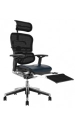 Ergohuman Black Leather Seat Mesh Back with Leg Rest