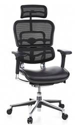 Ergohuman Leather Seat Mesh Back with Headrest