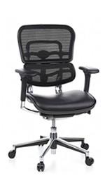 Ergohuman Leather Seat Mesh Back
