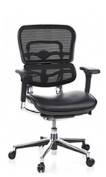 Ergohuman Leather Seat Mesh Back