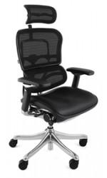Ergohuman Plus Leather Seat Mesh Back
