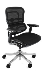 Ergohuman Plus Chair