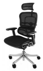 ergohuman-plus-mesh-office-chair