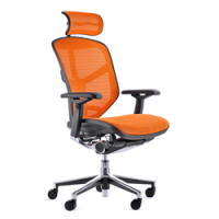 Enjoy Mesh Office Chair Colours