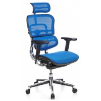 Ergohuman Blue Mesh Office Chair with Headrest
