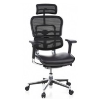 Ergohuman Leather Seat Mesh Back and Head Rest