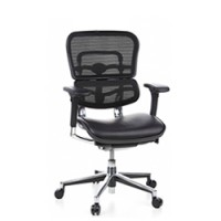 Ergohuman Elite Leather Seat Mesh Back