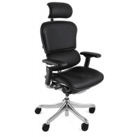 Ergohuman Plus Leather Ergonomic Office Chair