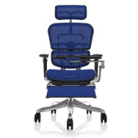 Ergohuman Plus Mesh Office Chair with Leg Rest and Notebook Arm