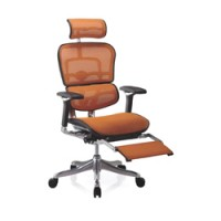 Ergohuman Plus Mesh Office Chair with Leg Rest