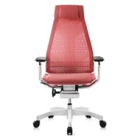 Genidia Mesh Office Chair White Frame