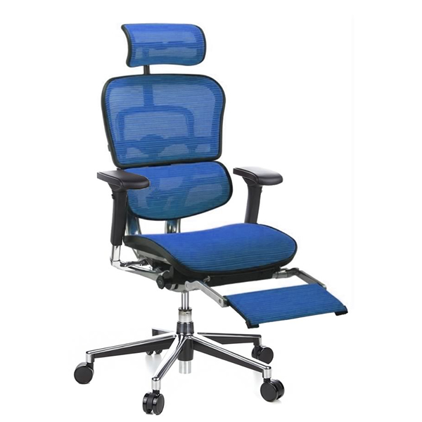 Ergohuman with Leg Rest Support - Blue Ergohuman Office Chair